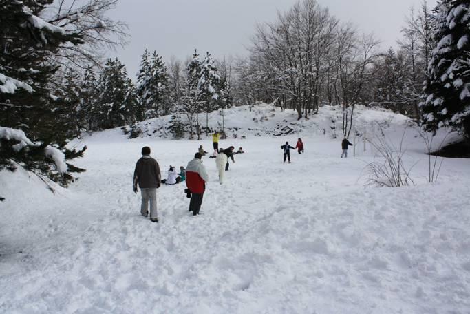 29 gennaio 2012 - Giornata sulla neve