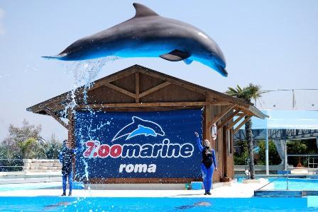 24 agosto 2011 - Gita a Zoomarine - Roma