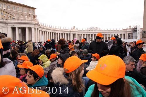 Web  21 120214 Udienza Papa Francesco