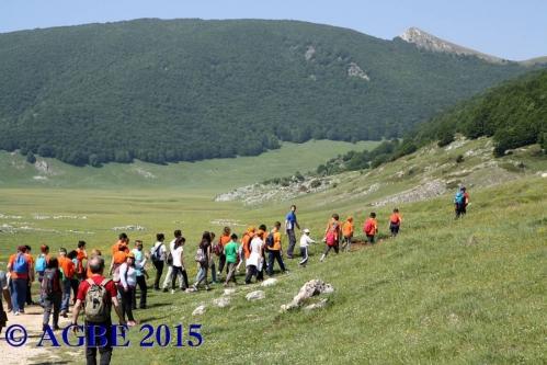 07-06-2015 CAI Voltigno