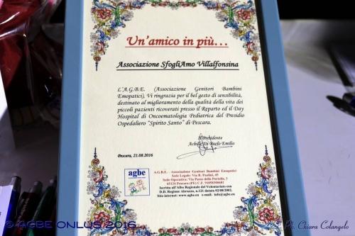 (Web) 085 2016 08 21 Villalfonsina Passeggiata Solidarietà