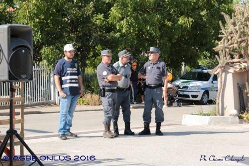 (Web) 12 2016 08 21 Villalfonsina Passeggiata Solidarietà