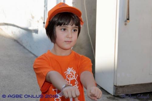 (Web) 22 2016 08 21 Villalfonsina Passeggiata Solidarietà