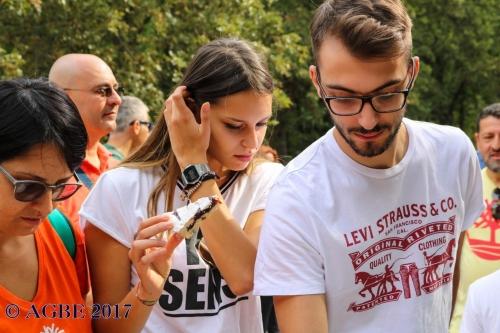 (Web) 17 2017 09 10 Torino Di Sangro